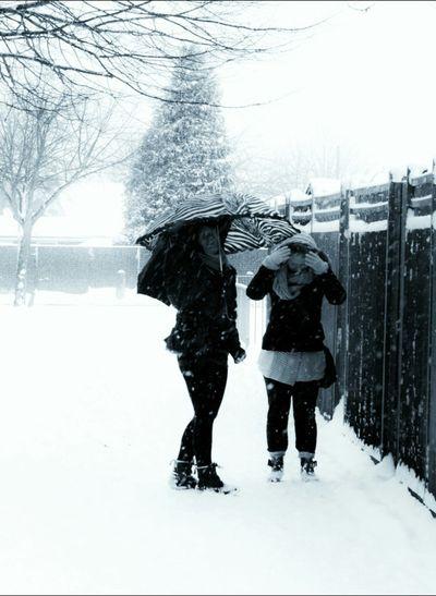 snowy day in