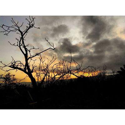 """ Jingga dan Sunyi "" Jingga Sunrise_and_sunsets Sunset Batu and Thestory di Entah dimana Foto Cerita Kehidupan Life View Trip to Eastjava INDONESIA Malang Kotamalang Jawatimur Lenovotography Photooftheday Photophone  Lzybstrd TheJourney Journey fatamorphosis pocketphotography"