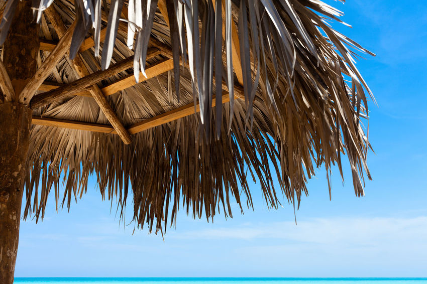 Natural sun hut and horizon view in Cayo Santa Clara in Cuba Aurora Azure Beach Beautiful Blue Caribbean Copy Space Cuba Dream Dreamlike Holiday Horizon Hute Nobody Reflection Relaxing Scenery Scenics Sky Sun Sunset Touristic Turquoise Water Waves
