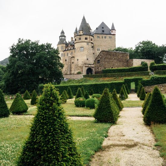 Fairytale Castle. 🏰 | Castle Architecture Tree Built Structure History Building Exterior Topiary Green Color Nature Day Outdoors Travel Destinations No People Growth Beauty In Nature Clear Sky Sky EyeEm Best Shots EyeEm Deutschland Eye4photography  Traveling Taking Photos Exploring