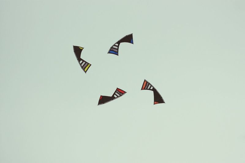 Kite Flying Kite Kite Festival Cerf Volant