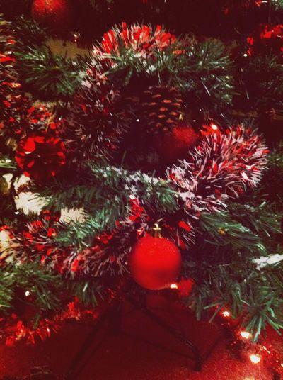 Christmas Tree Christmas lights Christmas Gift