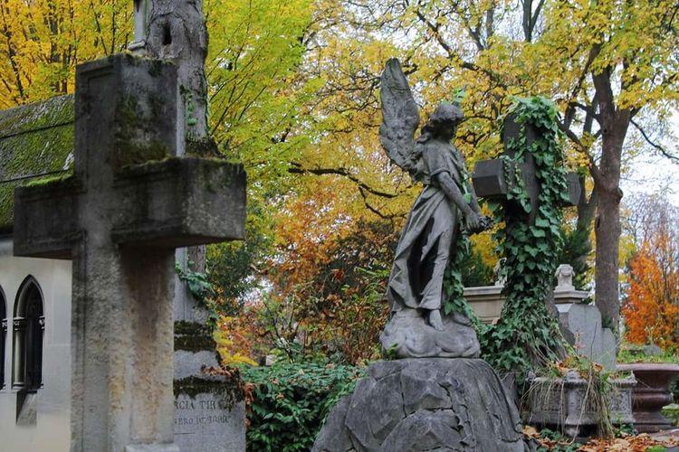 Tree Statue Sculpture No People Nature Cemetery Graveyard Père Lachaise Paris France Autumn Leaves
