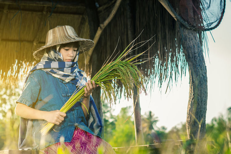 Farmer Lifestyle Rice Thailand Harvest Outdoors People Women