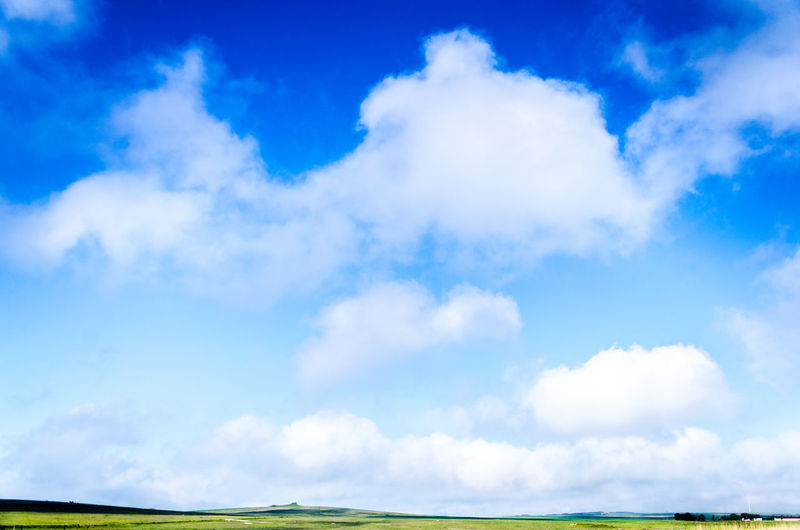 Beauty In Nature Blue Cloud Cloud - Sky Cloudy Cumulus Cloud Grass Growth Horizon Over Land Low Angle View Nature Non-urban Scene Remote Scenics Sky Tranquil Scene Tranquility