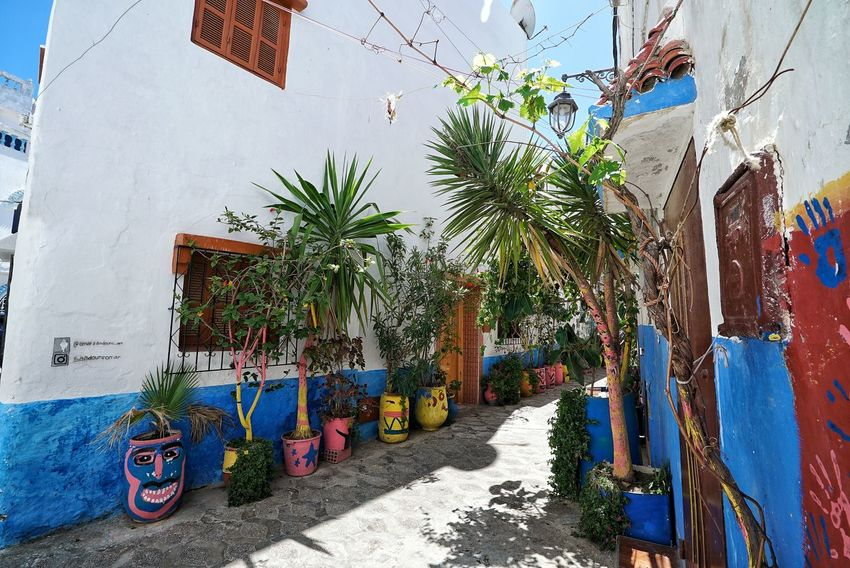 Morocco Photos Alley Light And Shadow No People Multi Colored Architecture Day Outdoors Built Structure Sky Narrow Path Miro Alley Scenics Morocco Rural Scene Town View Enjoying The View Travel Town Sights & Views  Streamzoofamily