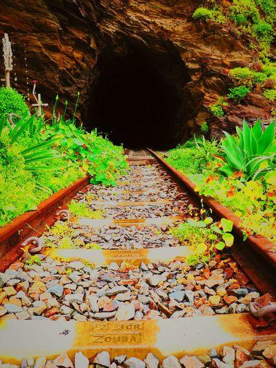Southafrica vilderness Taking Photos traintunnel First Eyeem Photo