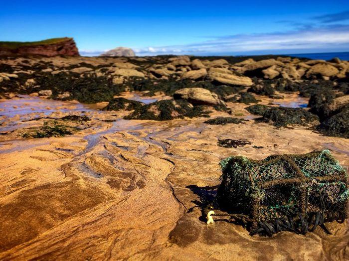 Geology Rock -