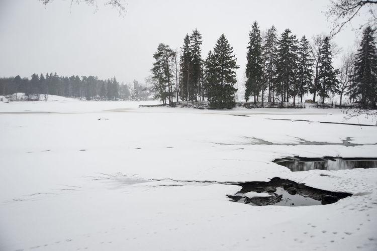 Beauty In Nature Cold Temperature Covering Day First Eyeem Photo Idyllic Landscape Mon Repos Nature No People Non-urban Scene Outdoors Remote Scenics Season  Snow Snow Covered Spruce Tranquil Scene Tranquility Tree Vyborg Weather Winter Winter