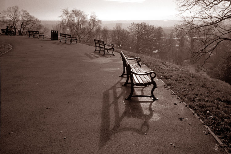 Architecture Black And White Black And White Collection  Brandon Hill Bristol Bristol Empty Benches EyeEmNewHere Monochrome Urban Landscape