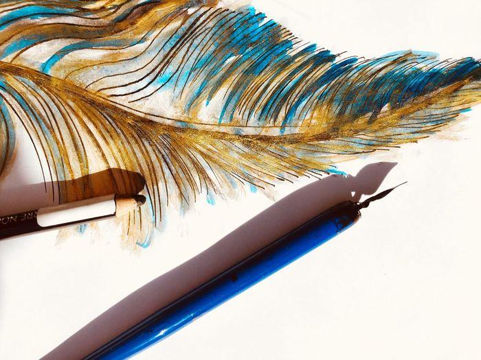 ArtWork Feather