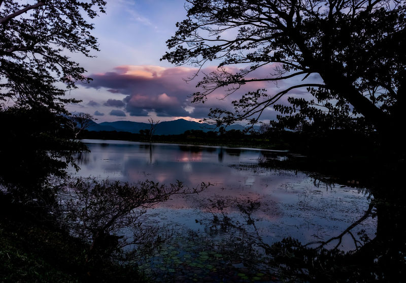 evening at lake Reflection Tree Sky Lake Water Nature Silhouette Sunset Landscape Mountain Cloud - Sky Outdoors EyeEmNewHere EyeEm Ready