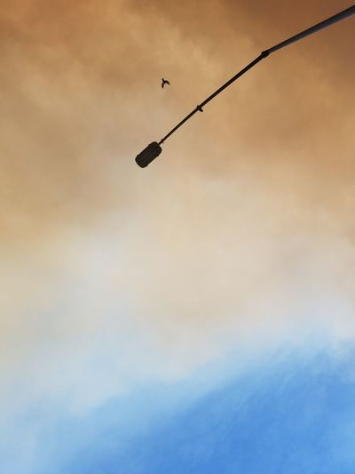 Low angle view of silhouette street light against cloudy sky during sunset