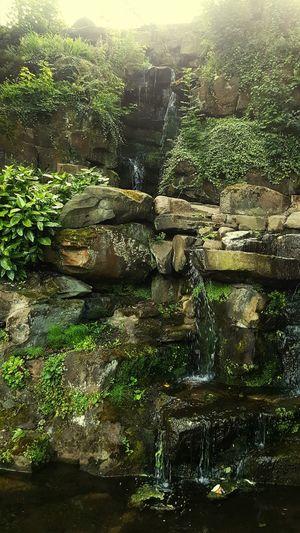 Waterfall Avenham Park Preston Millerpark