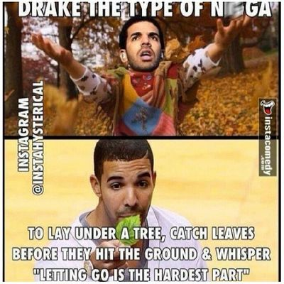 Whoever did...Icant ...Dead Drake  Drakebelike Autumn Fall LeavesFalling