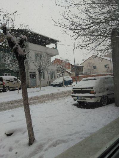 City Snow Cold