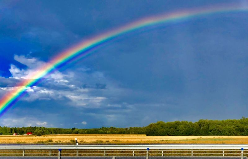 Rainbow Rainbow Sky Cloud - Sky Beauty In Nature Multi Colored Scenics - Nature Nature Day Land Tree Tranquil Scene Environment Railing Outdoors No People Rain
