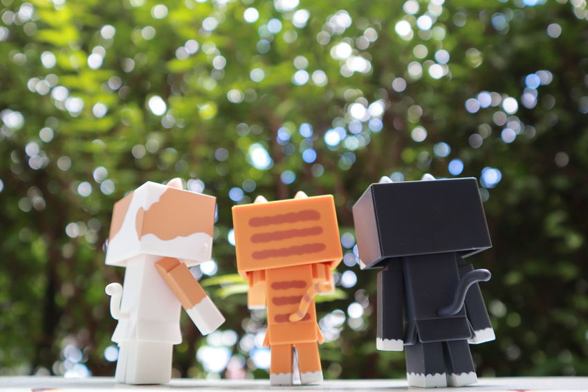 Nyanbo Danboard Danbo Nyabo Meawstery Belief Cat Close-up Day Focus On Foreground Group Of Objects Large Group Of Objects Nature No People Outdoors Plant Selective Focus Toy Tree EyeEmNewHere Tree Nature Plant Low Angle View Spirituality