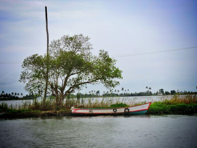 Nature Outdoors No People Nice View Beauty In Nature Boat Back Water Kerala Alleppy My Travel Diaries India Unseen