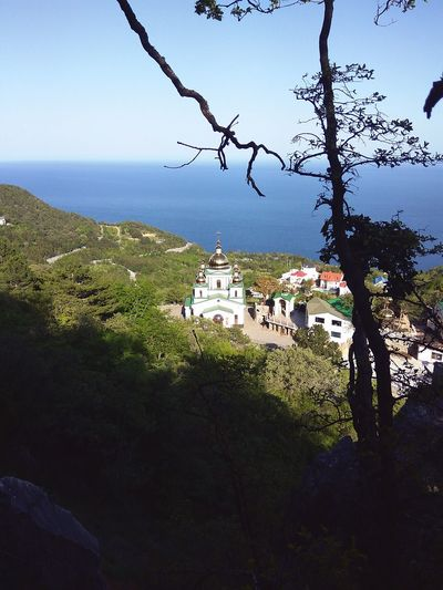 Natal_photo Oreanda Crimearepublic Mountain Beauty In Nature Tree Nature No People Architecture