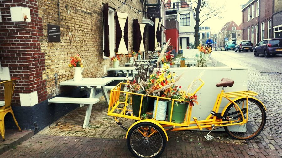 blooming bike Parking Bike Flowers Land Vehicle Car Parking