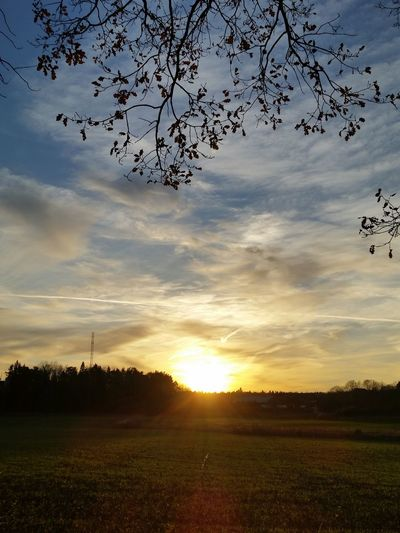 Cloud - Sky Sunset Tree Nature Landscape Sky Tranquility Tranquil Scene Rural Scene Beauty In Nature No People Outdoors Silhouette Scenics Sunlight