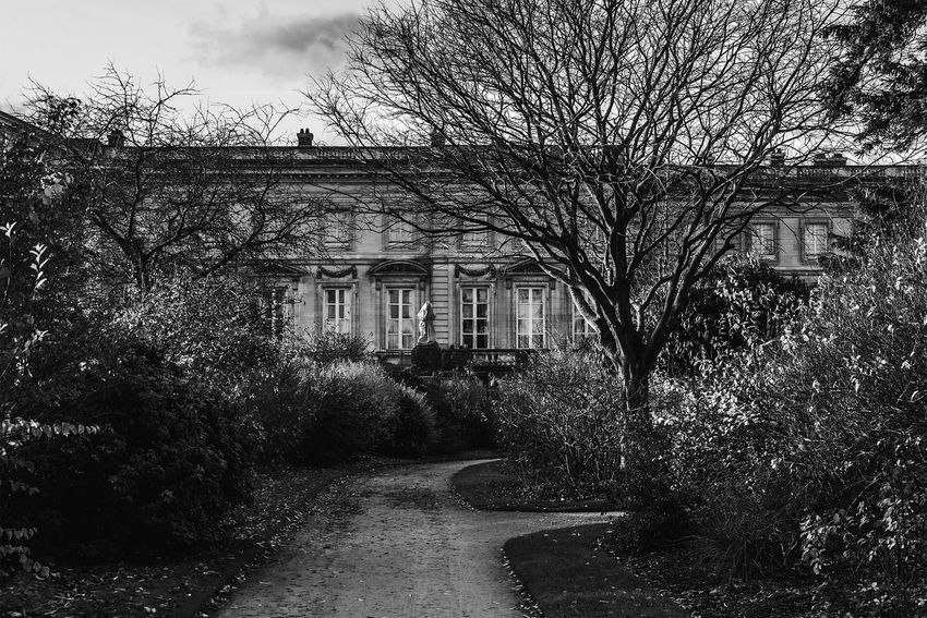 The Château de Compiègne is a French chateau, a royal residence built for Louis XV and restored by Napoleon. Compiègne was one of three seats of royal government, the others being Versailles and Fontainebleau. It is located in Compiègne in the Oise department and is open to the public. Architecture Ghost History Architecture Ivy Monochrome Napoleon Bonaparte No People Outdoors Palace Park - Man Made Space Tree
