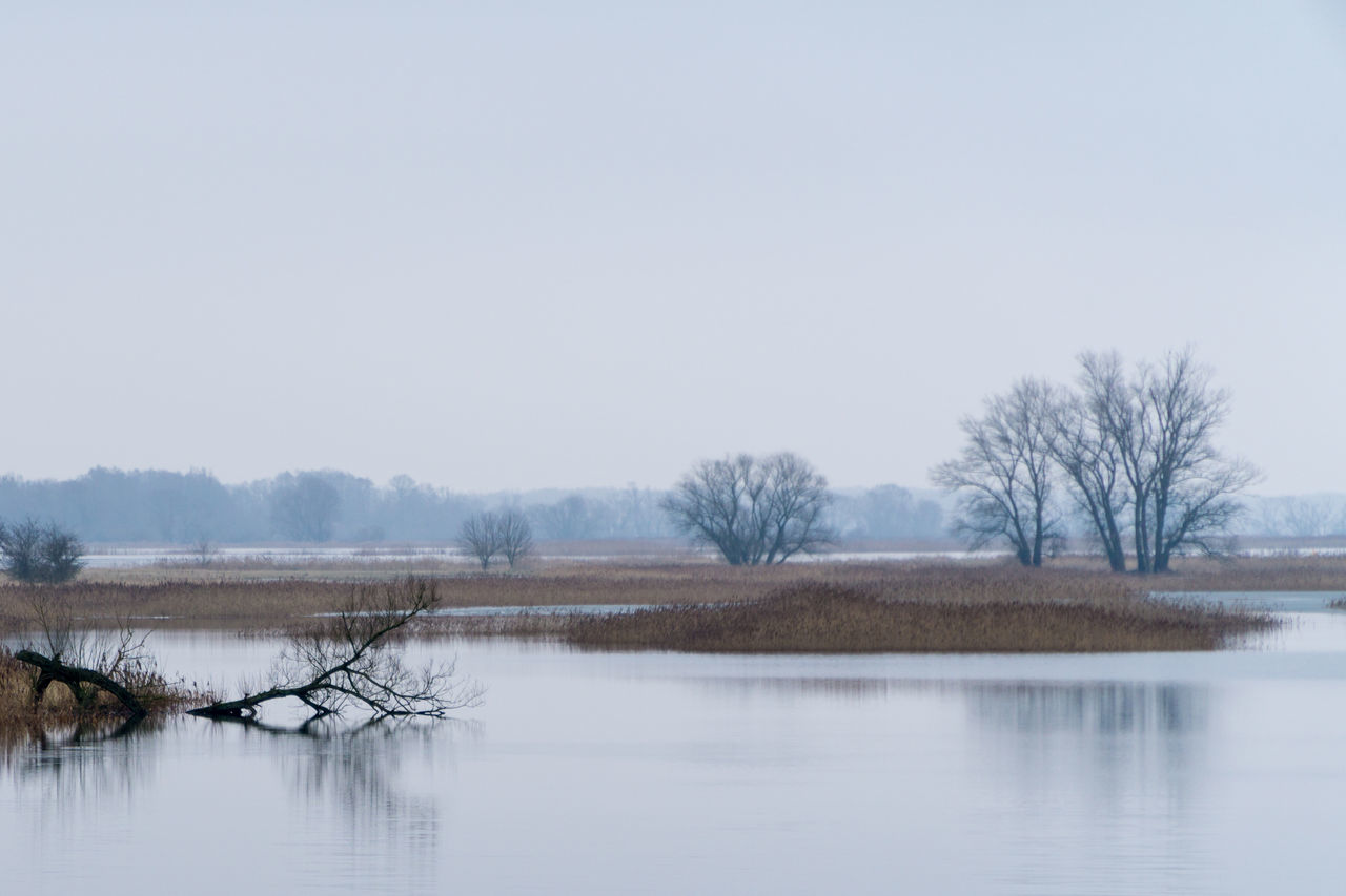 nature, tranquility, lake, beauty in nature, bare tree, water, tranquil scene, scenics, tree, no people, winter, outdoors, copy space, reflection, cold temperature, day, landscape, clear sky, waterfront, sky, snow