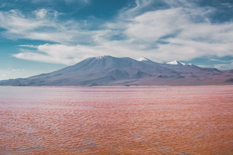 This color can't be real I thought. But then I was there. Standing right in front of it. Seeing it with my own eyes. Mindblowing! Flamingo Habitat Red Salt Travel Uyuni Adventure Animal Themes Cloud - Sky Day Explore Gravel Idyllic Laguna Colorada Lake Landscape Mountain Range No People Outdoors Salt Flat Scenics Shore Snowcapped Mountain Travel Destinations Water