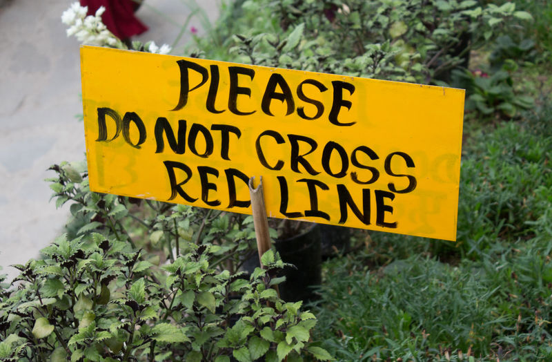 Close-up of yellow sign on plants