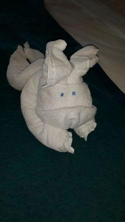 Hotel First Eyeem Photo Bunny  Towel Hospitality Eyembestshots Towel Animal Travelling......