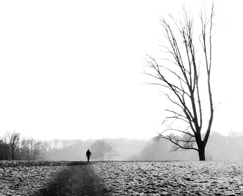 Treegasmic Tuesday Monochrome Melancholic Landscapes Landscape Landscape_Collection Black And White Collection  Fortheloveofblackandwhite The Moment - 2015 EyeEm Awards Ladyphotographerofthemonth The Great Outdoors - 2015 EyeEm Awards Capture The Moment