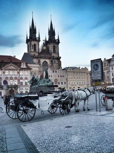 Praga Prague Adventures In The City