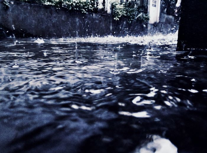 Last of the exotic rain series, it seem not only me who love playing on the rain https://youtu.be/nCkpzqqog4k Raining Rainy Day I Love Rainy Days☔ Close Up Selective Focus Showcase April Edited And Software Filtered Image Retouching Spinly From My Point Of View Mobile Photography Htc One M8 Htcm8 Confused? Me Too. Blue Wave