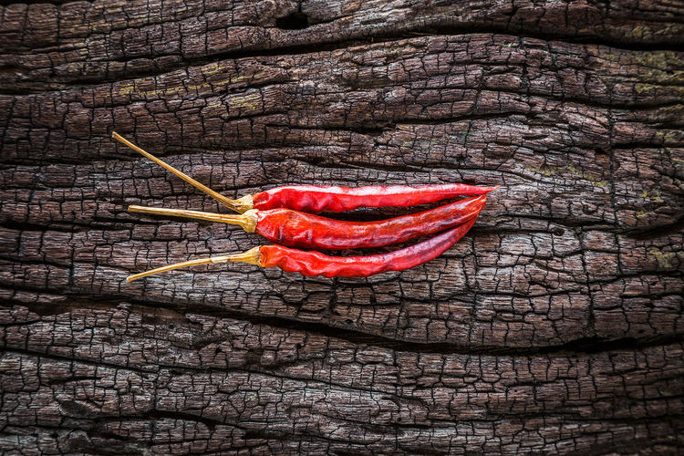 Dry chili peppers are placed on old wood. Cayenne Kitchen Cooking Spicy Aroma Capsicum Pepper Capsicum Powder Chili Pepper Close-up Freshness Full Frame Ingredient Nature Pattern Pepper Pepper - Seasoning Red Spice Spices Textured  Tree Vegetable Wall Wood - Material