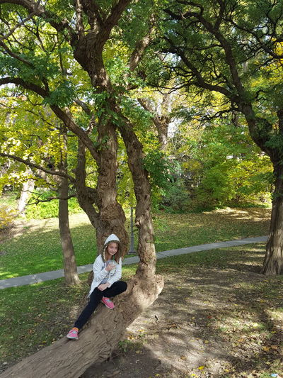 High angle view of girl sitting on tree in park