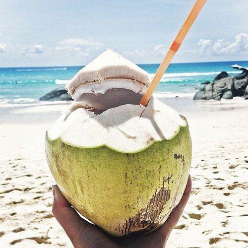 코코코코넛 졸려