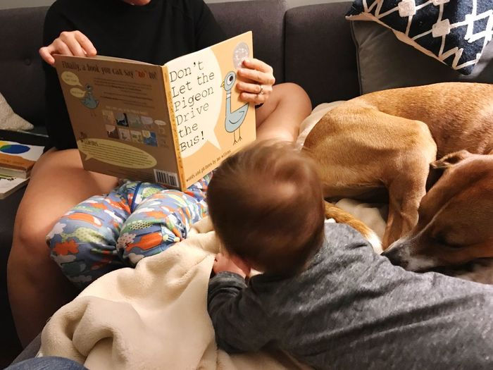 Reading. Dog Reading A Book Reading EyeEm Selects Indoors  Real People Furniture High Angle View Rear View Men Lifestyles Childhood Child Home Interior