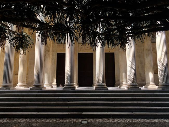 A bit of past... Architecture Getting Inspired EyeEm Selects Architecture Architectural Column Built Structure The Past History Building No People Building Exterior Outdoors Staircase Tree Nature Plant In A Row Day Ancient Sunlight Colonnade Mansion