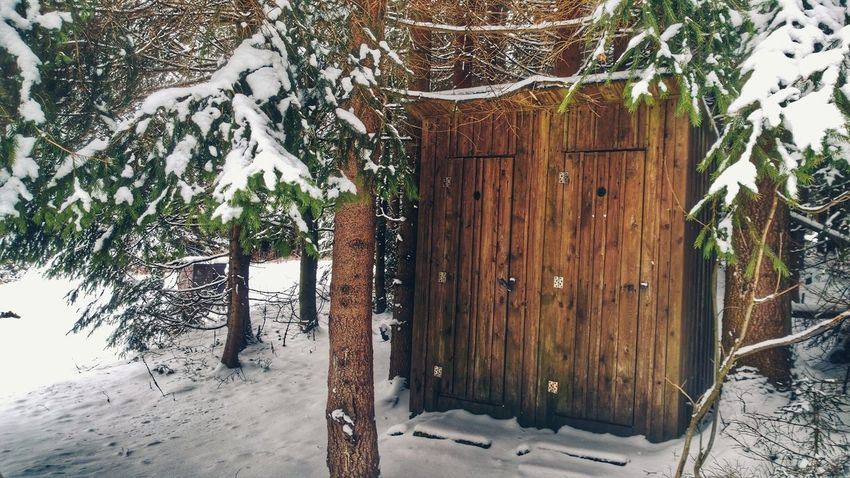 Outhouse outside. Outhouse Open Air Forest Snow Winter Holidays