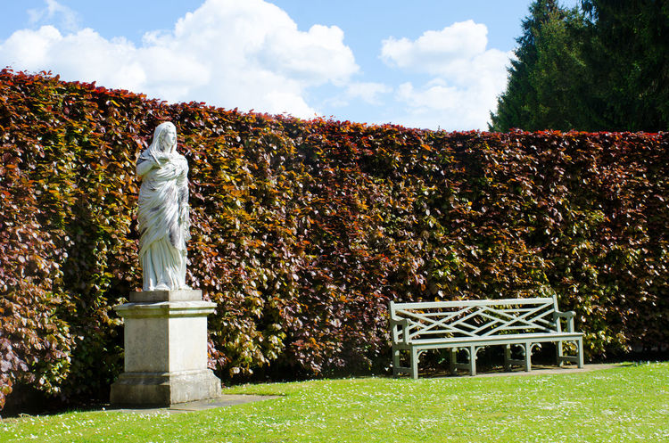 Seat by statue in English Country Garden Bench Benches Classical Garden Hedge Outdoors Sculpture Seat Sky Statue White White Color Wooden