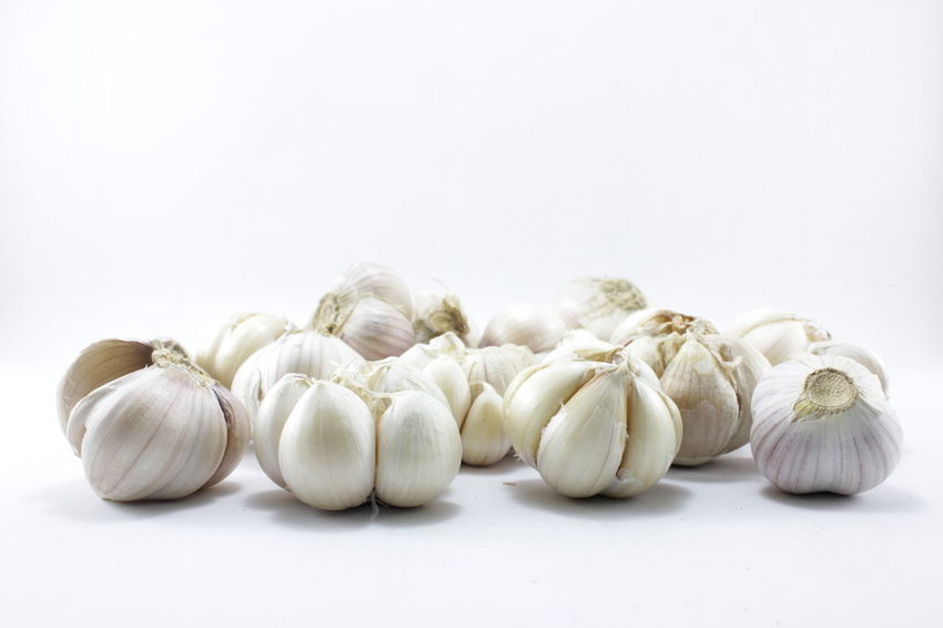 Garlic on a white background Garlic On A White Background