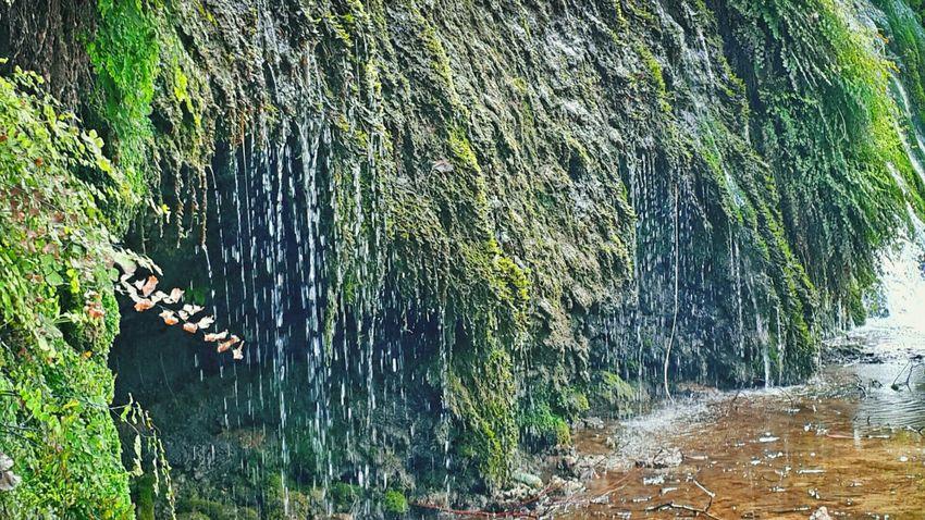 Doğanın verdiği huzur başka hiç bir yerde yok... Nature_collection Antakya-Harbiye Ineedamiracle Lostsouls