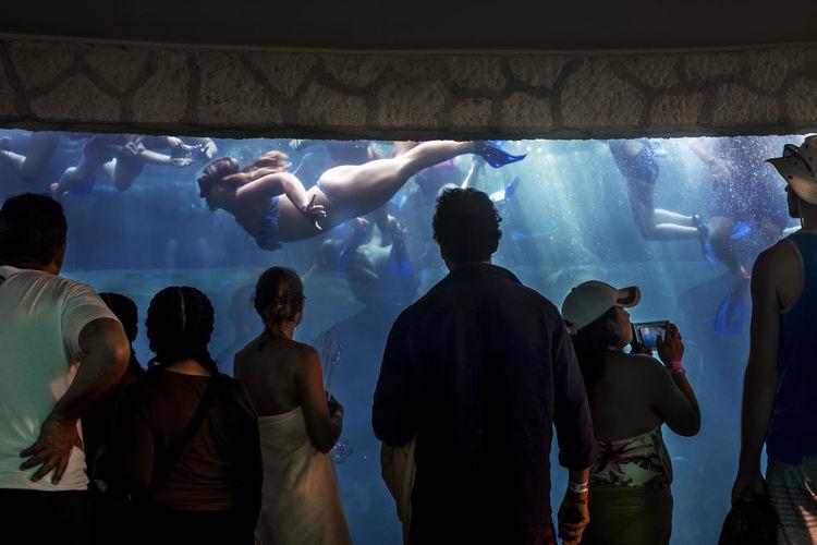 Group of people swimming in aquarium