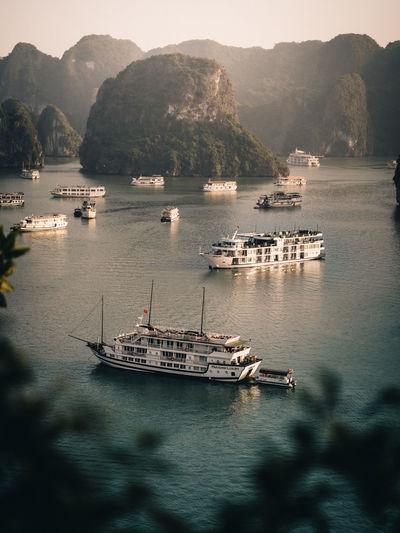 Sailboats sailing in sea