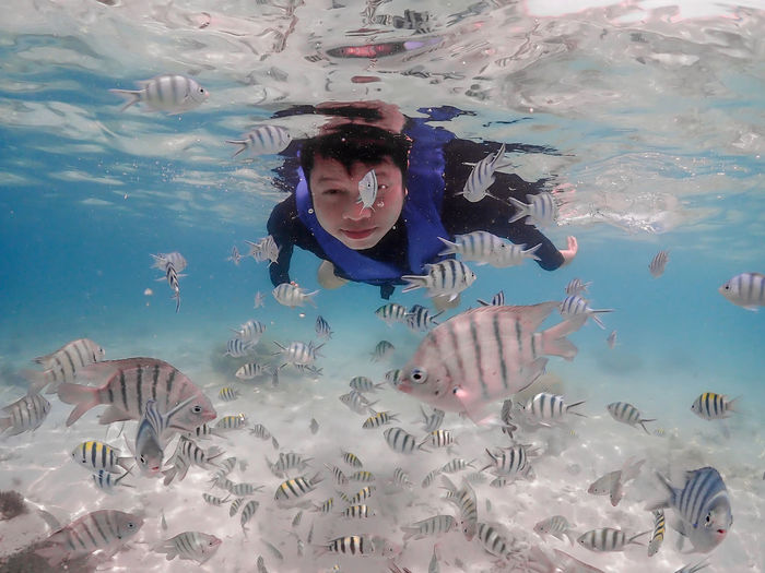 Water Underwater One Person Sea Swimming Real People Leisure Activity Front View Young Adult Lifestyles Nature Blue Animals In The Wild Animal Wildlife Waist Up Young Women Exploration UnderSea Outdoors Marine Underwater Diving Swimming Pool