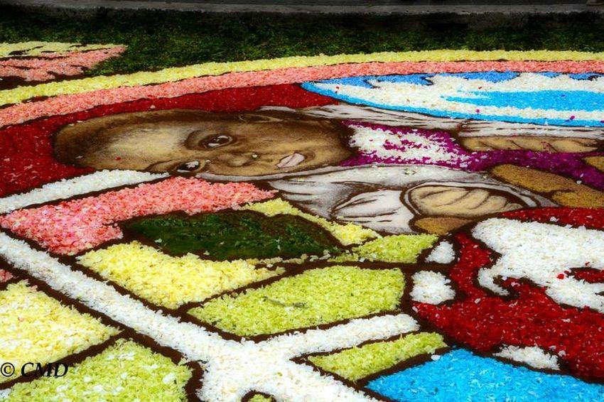 Genzano Infiorata Flowers
