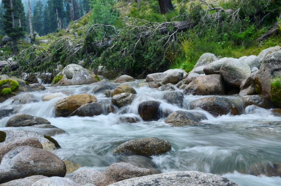Kashmir Pakistan Revoshots Beauty In Nature Day Forest Freshness Long Exposure Motion Nature No People Outdoors River Rock - Object Scenics Srinagar Kashmir Tranquil Scene Tranquility Tree Water Waterfall