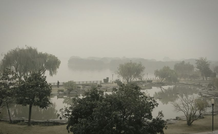 Fog Tree Nature Water Sky Day China In My Eyes China View China Photos Parkscapes Outdoorshot Outdoor Pictures