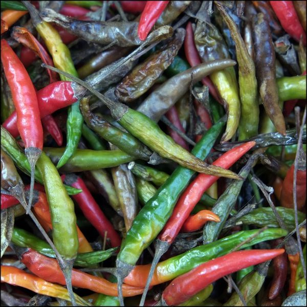 Chillis Red And Green Chilli Spicy Food